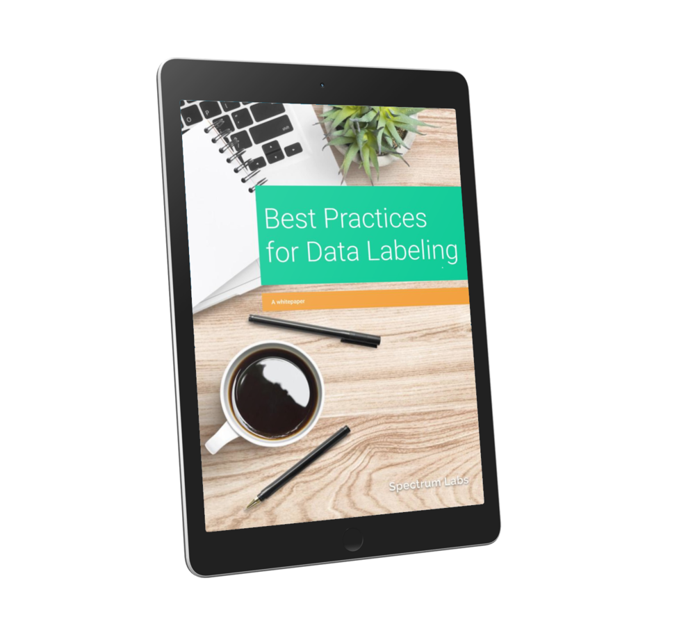 best practices for data labeling tablet